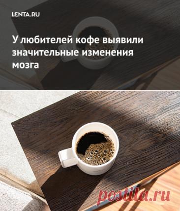 У любителей кофе выявили значительные изменения мозга: Наука: Наука и техника: Lenta.ru