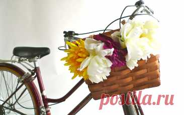 корзина цветов на велосипеде: 2 тыс изображений найдено в Яндекс.Картинках