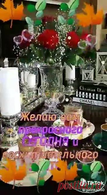 video_2676852725173(1).mp4