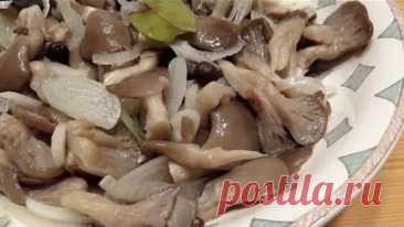 Жареные вешенки. Вешенки как готовить. Жареные грибы со сметаной. - Яндекс.Видео