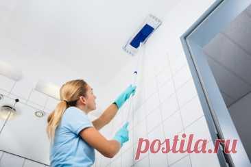 Как отмыть натяжной потолок