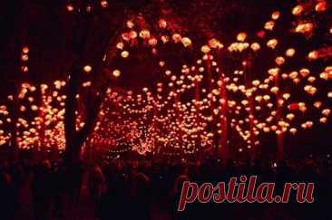 Фестиваль света во Франции Очень много различных фестивалей существует по всему миру, в различных уголках планеты. Отдельное внимание требует фестиваль света во Франции, ежегодно проходящий в Лионе. Весь город загорается огнями, фонарями, горят фасады всех зданий, на это мероприятия приезжают миллионы людей со всего мира.