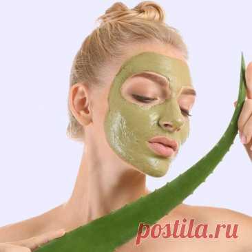 5 лучших масок с алоэ для лица + рецепты своими руками Мы выбрали самые эффективные маски с алоэ для лица, которые можно купить или сделать в домашних условиях.