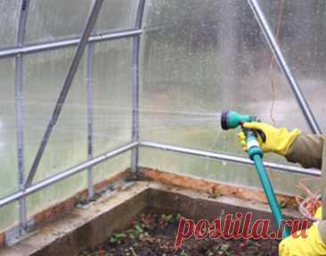 Как подготовить теплицу весной к посадке и выращиванию растений - Сайт о растениях