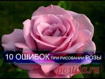 El dibujo de la rosa. 10 faltas básicas