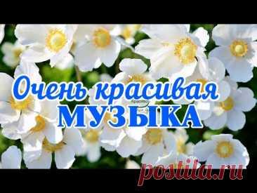 Какая потрясающая красивая музыка Сергея Чекалина для души! Хочется слушать и слушать снова!