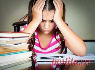 Как помочь школьнику справиться с паникой, волнением и стрессом перед ЕГЭ? / Малютка