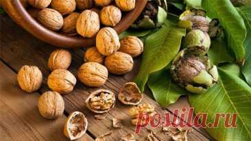 Чем полезны грецкие орехи для женского и мужского здоровья