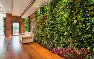 Вертикальное озеленения: живая стена как оригинальный декор | FORUMHOUSE | Яндекс Дзен