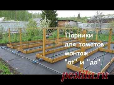 """Парник для томатов + капельный полив - монтаж """"от"""" и """"до""""."""
