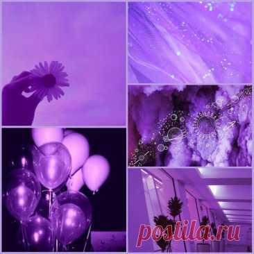 Яркость пурпурного цвета в ваших волосах