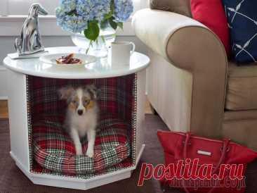 25 потрясающих спальных мест для собак Собака, это не просто пушистый комок позитивной энергии, она член семьи, существо с личными потребностями и особенностями характера. Каждый хозяин хочет, чтобы их пушистые сладкие питомцы чувствовали ...