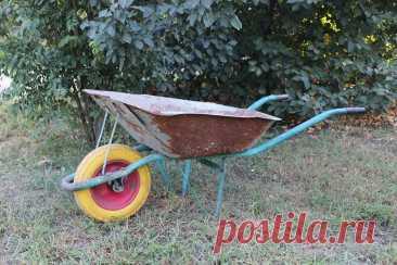Модернизация садовой тачки. Как сэкономить на колесах | Рекомендательная система Пульс Mail.ru