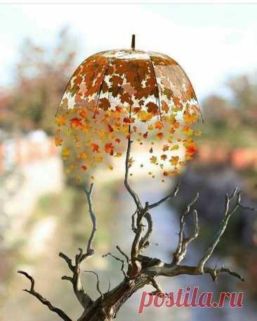 С легкой грустинкой, как тень паутины, Мысли рисуют дожди и ненастье. Чтоб оживить этой грусти картину, Сделай штрихи из улыбок и счастья.. Лариса Резаева