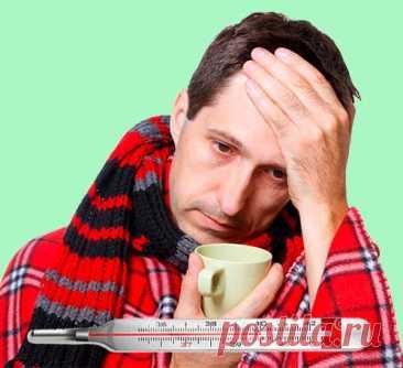 Гипертермия  Надо ли сбивать высокую температуру