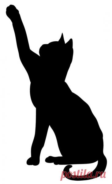 Коты, кошки, котята - вся эта красота может поселиться в виде рисунка или аппликации на Вашей сумке! Идеи и шаблоны! | Юлия Жданова | Яндекс Дзен