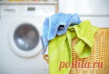 После этой процедуры махровые полотенца станут как новые К сожалению, со временем большинство махровых полотенец теряет уютную мягкость и даже свою главную функцию – впитывать влагу – начинают выполнять все хуже и хуже.Происходит это из-за всевозможных моющ...