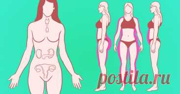 Похудение с «Аллохолом»: эффективный препарат для очистки печени и коррекции фигуры!