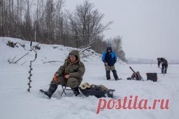 «Рыбалкой доволен, как волк своей добычей». Еженедельный отчёт с кировских водоёмов Прошедшая неделя была морозной, но к выходным потеплело, и многие отправились на рыбалку. Однако из-за прошедших ранее сильных снегопадов добираться до места ловли было трудно. Несмотря на все препятствия, кировчанам удалось похвастаться хорошим уловом. Подробнее о том, как прошли выходные у рыбаков, читайте в... Читай дальше на сайте. Жми подробнее ➡