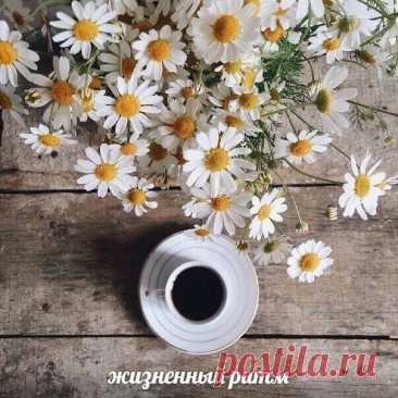 На вопрос чему я рада, Право слово, нет ответа, - Просто кофе с шоколадом, Просто утро, просто лето.  Людмила Рубцова