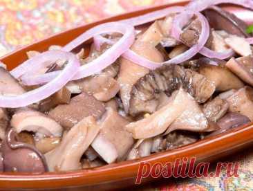 Засолка грибов по бабушкиному методу - горячим посолом. Можно есть практически сразу