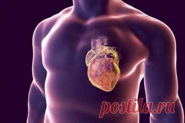 Кардиологи назвали простой способ, как самостоятельно проверить здоровье сердца - Будь в форме! - медиаплатформа МирТесен