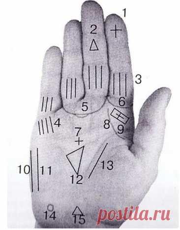 Что говорят о человеке магические знаки на ладони - Сонники, гороскопы, гадания - медиаплатформа МирТесен У каждого человека линии на ладони разные и индивидуальные. У настоящих магов, гадалок и экстрасенсов судьбоносные линии на руке отличаются от ладони обычного человека. Чтобы узнать, каким даром обладаете вы, нужно внимательно изучить рисунки на руке, а значение можно прочитать ниже. Значение