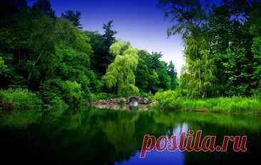КРАСИВЫЕ КАРТИНКИ ПРИРОДЫ - 628 тыс. картинок - Поиск Mail.Ru