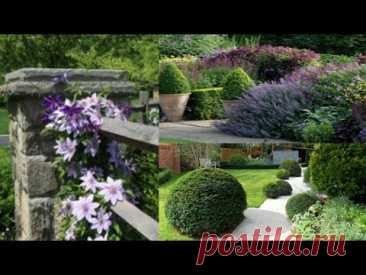 Садовый пейзаж для частного дома. Идеи