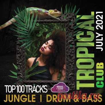 """Tropical Jungle Club (2021) Mp3 """"Tropical Jungle Club"""" - Все треки этого сборника живые, динамичные, сочные, насыщенные саундом разнообразных музыкальных инструментов с упором на драм басовую составляющую. Здесь нет банальщины, только оригинальный саунд. Исключительно тёплая, колоритная и цепляющая музыка!Исполнитель:"""