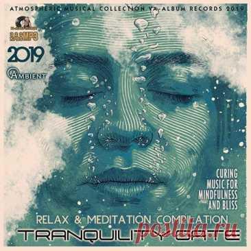 """Tranquility Gate: Relax Ambient Music (2019) Mp3 Отдохнуть и расслабиться, погрузиться в мир гармонии, транса и наслаждений – все это вам под силу вместе с музыкой сборника """"Tranquility Gate"""". Мелодичная, приятная мелодика, завораживающие вокализы и тантрические напевы, сочетание этих музыкальных ингредиентов создает идеальную атмосферу"""