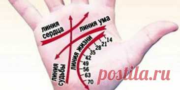 О чем скажут линии любви на руке? Линия любви на руке: описание того, как найти + разница между двумя руками + 10 знаков, которые нужно уметь интерпретировать + подборка книг по хиромантии