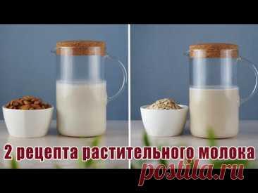 Больше не покупаю молоко в магазине  |  Овсяное и миндальное молоко ЗА 5 МИНУТ