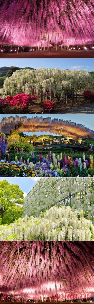 Самые красочные места на планете