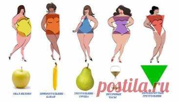 Узнайте свой идеальный рацион питания по форме своего тела - Образованная Сова Форма вашего тела может рассказать гораздо больше о вас, чем вы могли бы подумать. Она может не только раскрыть многие ваши привычки, но и подсказать тип питания, который идеально подходит для вашей фигуры. Стоит, однако, что вне зависимости от типа вашей фигуры, придерживаться правил сбалансированного питания и избегать насыщенных жиров. Итак, обратите внимание на рисунок …