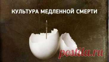 Вадим Зеланд: «Люди не замечают, что болеют, и умирают глупейшим образом!» - Образованная Сова
