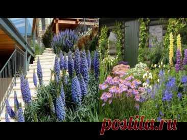 Дизайн цветников вдохновение садового декора