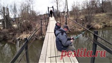 Получил ответ из департамента рыбного хозяйства – теперь смело ловлю рыбу под мостами. И вам советую | жерех | Яндекс Дзен