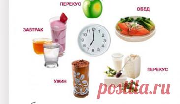 Диета ПП – 7 принципов диеты, меню, рецепты, отзывы