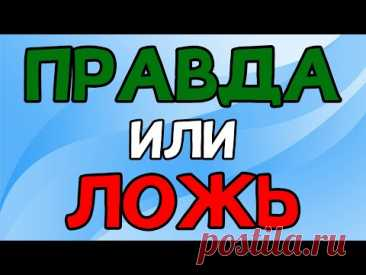 Викторина ПРАВДА или ЛОЖЬ - YouTube