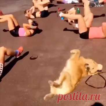 It's exercise time