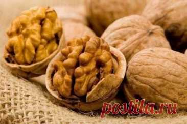 Грецкий орех поможет коже - Образованная Сова