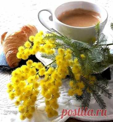 C добрым утром!  Даже маленькая позитивная мысль с утра способна изменить весь день!