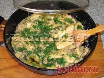 Куриное филе в сливочном соусе с грибами: рецепт, фото рецепт, пошаговый рецепт с фото
