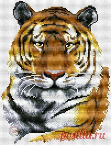 Запись на стене Вышивка крестиком. Тигр.