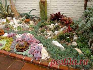 10 вредных садово-огородных мифов, которым мы верим | Почва и плодородие (Огород.ru)