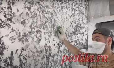 Несколько способов визуально выровнять стены без сложного и дорогого ремонта - С миру по нитке - медиаплатформа МирТесен