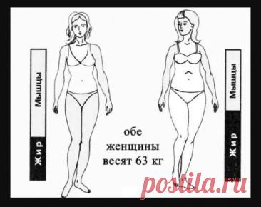 10 заповедей при борьбе с лишним весом | Советы целительницы
