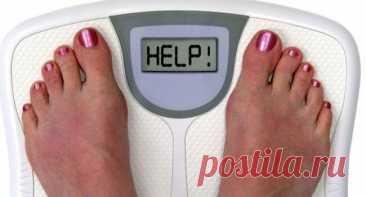 Какая основная ошибка в питании, ведущая к набору веса? Казалось бы, все делаем правильно: сидим на диете, регулярно занимаемся спортом, ведем активный образ жизни… — а вес, как сказал некогда классик, «и ныне там». В чем же причина наших неудач? Что же мы делаем неправильно? Американские диетологи считают, что одной из основных ошибок, ведущих к набору веса, является регулярное потребление продуктов, сочетающих одновременно белок […] Читай дальше на сайте. Жми подробнее ➡