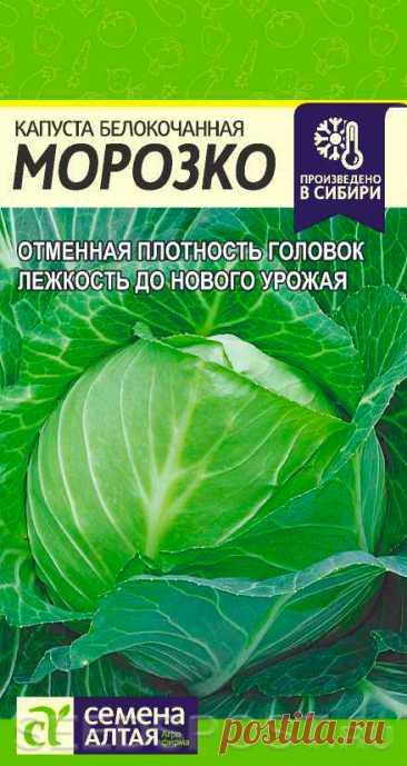 Капуста белокочанная Морозко, 0,3 г, купить в интернет магазине Seedspost.ru